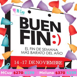 Buenfin2014-800x800